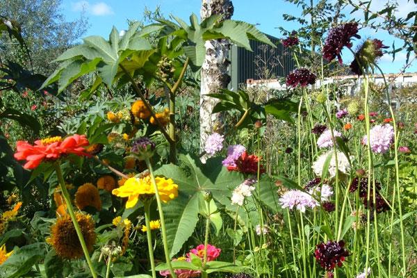 Voor de soevereine mens van for Www bloem en tuin nl